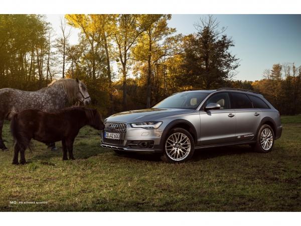 "Audi A6 allroad Wandbild auf gebürstetem Aluminium ""Pony"""