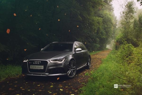 "Audi RS6 Wandbild auf gebürstetem Aluminium ""Laubfall"""